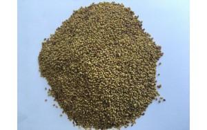 Семена за покълване алфа-алфа 50гр.